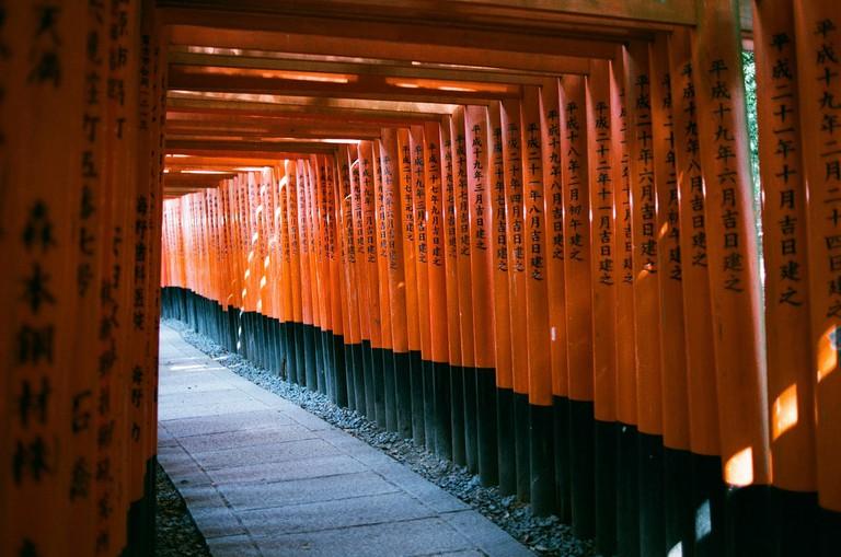 The torii gates of Fushimi Inari Shrine