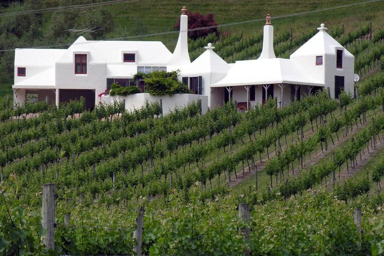 Te Mata Estate vineyard, Hawke's Bay