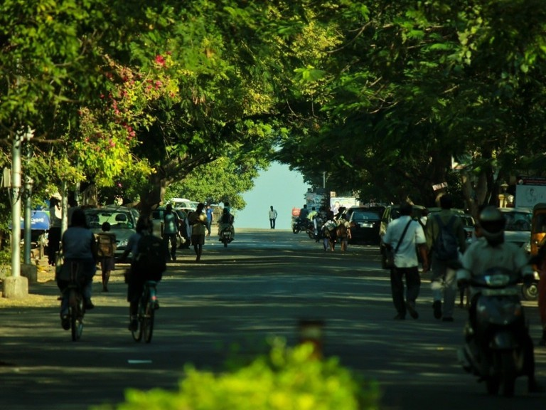 The road through Blue Cross Road and onto Besant Nagar Second Avenue (Pictured here) is popular among cyclists