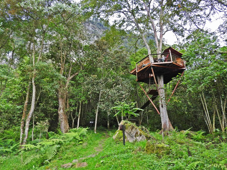 The Tanager's Nest is an amazing place to spend a night