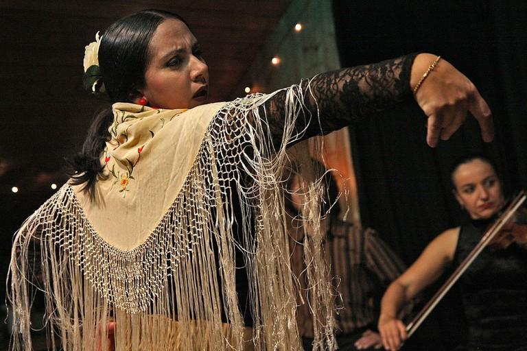 flamenco-594272_1920
