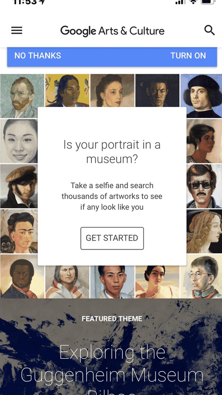 Google Art and Culture app