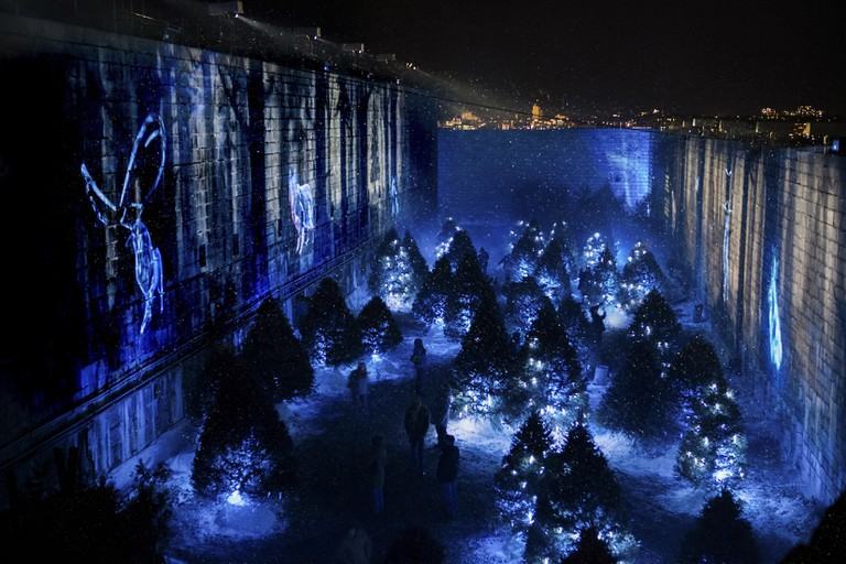 Visitors in the illuminated woodland installation of Lumina Borealis at Fort Henry