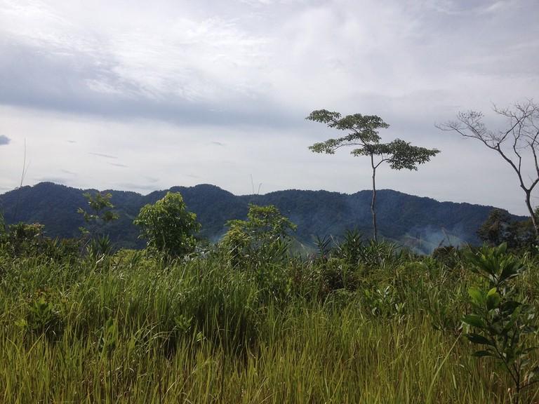Motorbike through pristine jungle | Sam Roth
