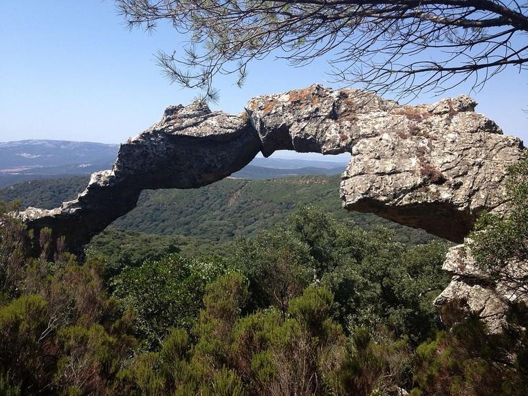 Parque Natural de los Alcornocales, Spain