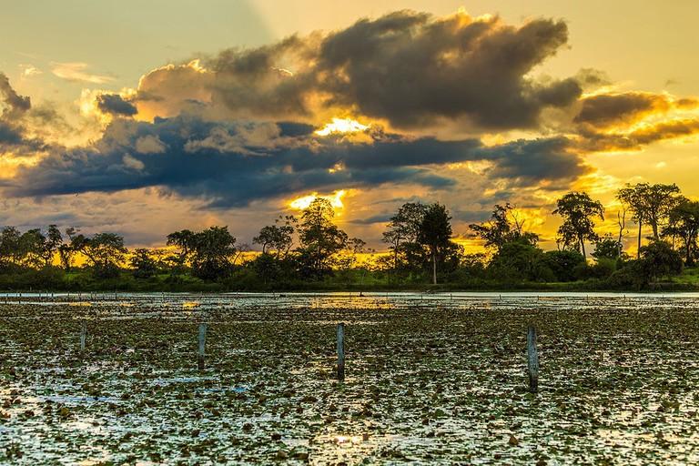 Por_do_Sol_Pantanal_em_Mato_Grosso_Brasil