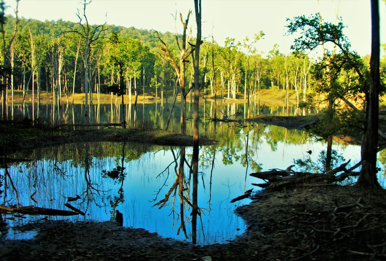 The river Pench at the border of Pench National Park