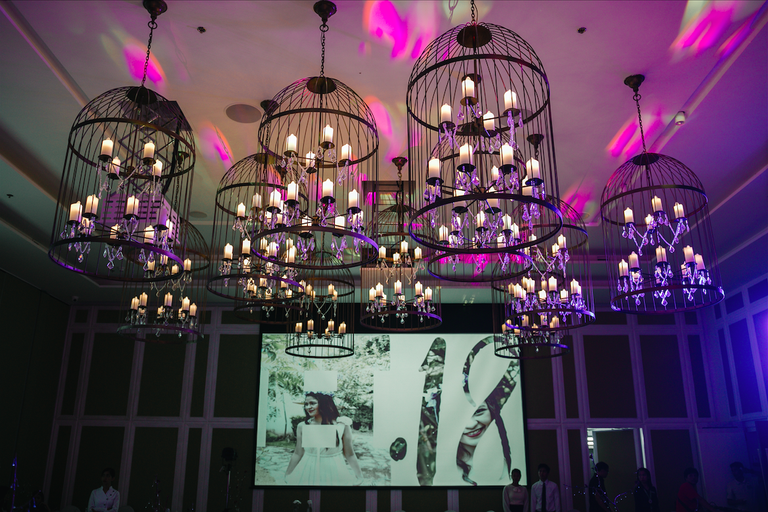 Light fixtures and screen at Hannah's debut