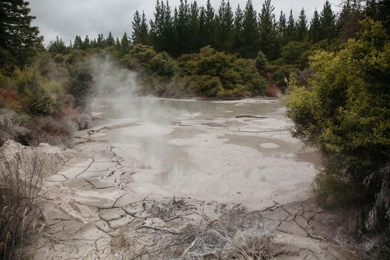 SCTP0093-KANE-NZ-Rotorua00007