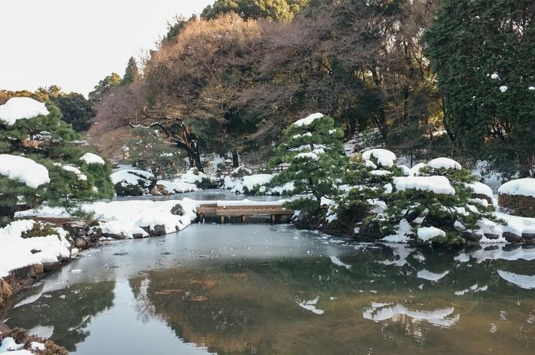 SCTP0104-SHINKAREVA-SHINJUKU-GYOEN21