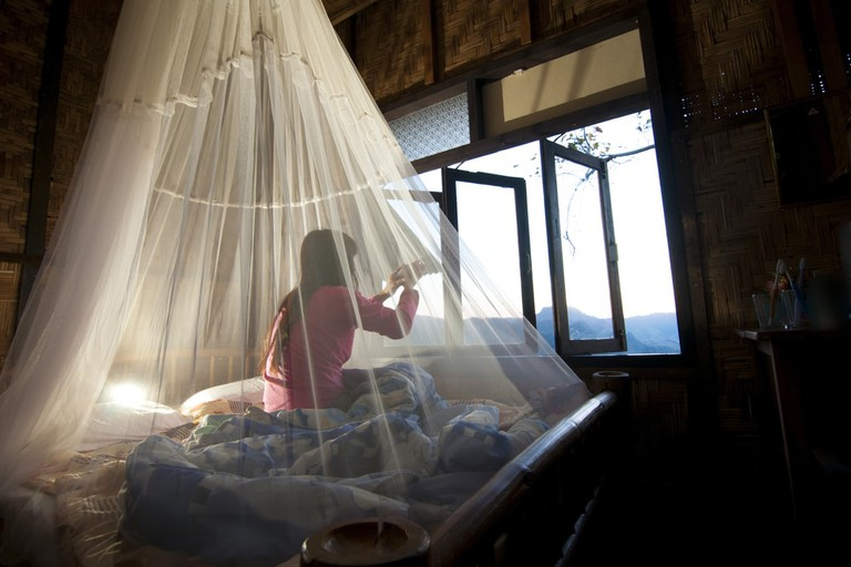 Put mosquito nets to good use