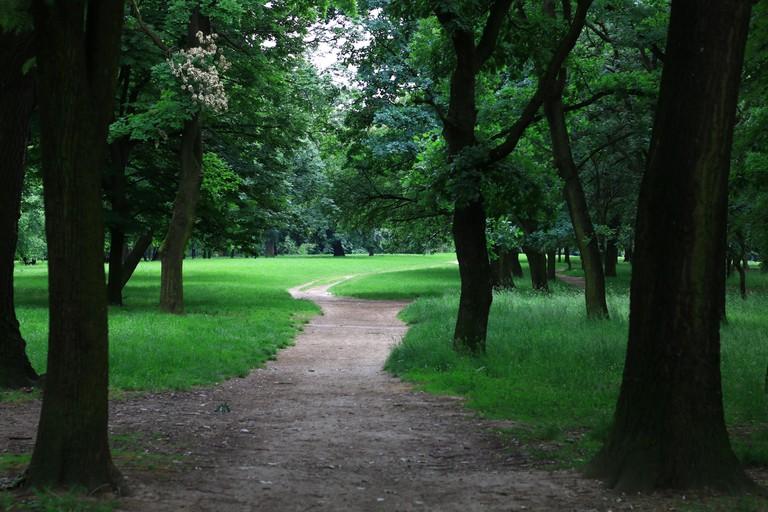 Košutnjak Park, where Mihailo was assassinated