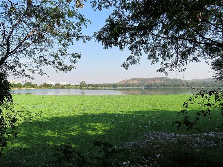 The Scenic Pashan Lake, Pashan, Pune