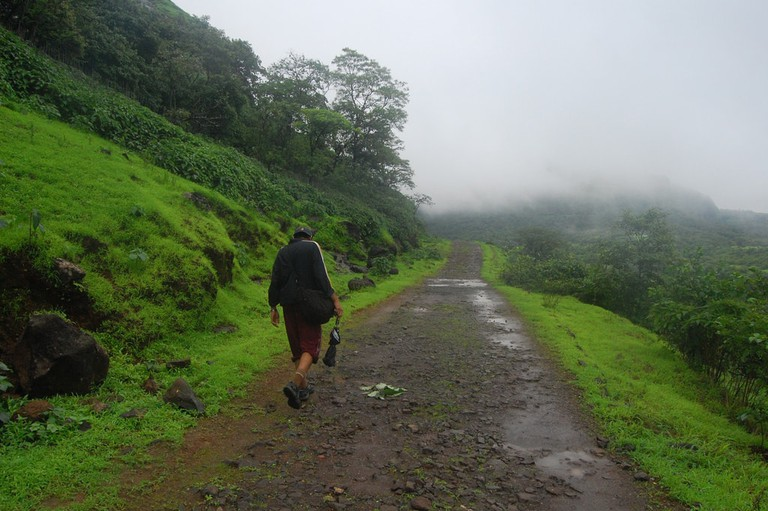 The trek route during a monsoon