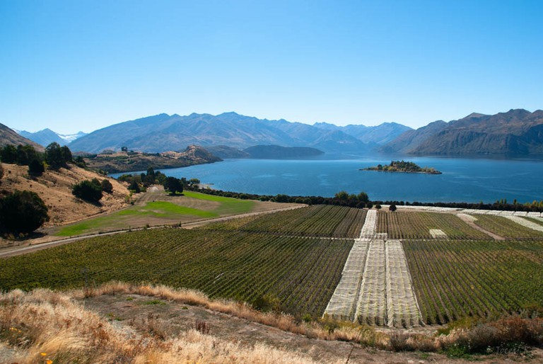 View Over Rippon Vineyard | © Jocelyn Kinghorn / Flickr