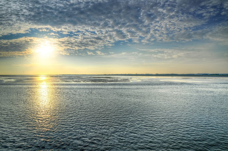 The Wadden Sea was named a UNESCO World Heritage Site in 2014