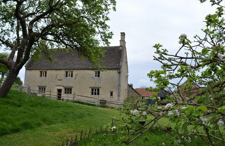 Newton's apple tree, Woolsthorpe Manor, Lincolnshire