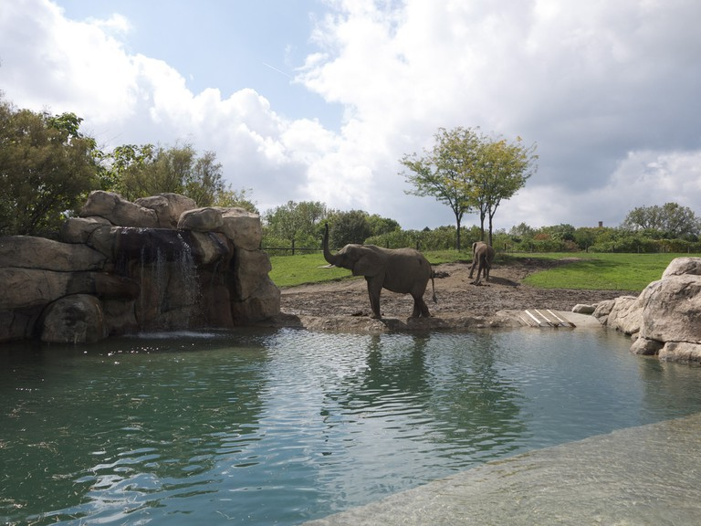 Indianapolis Zoo | Davitydave/Flickr