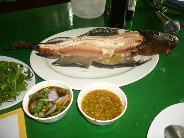 Snakehead fish at Baan Suan Restaurant in Singburi