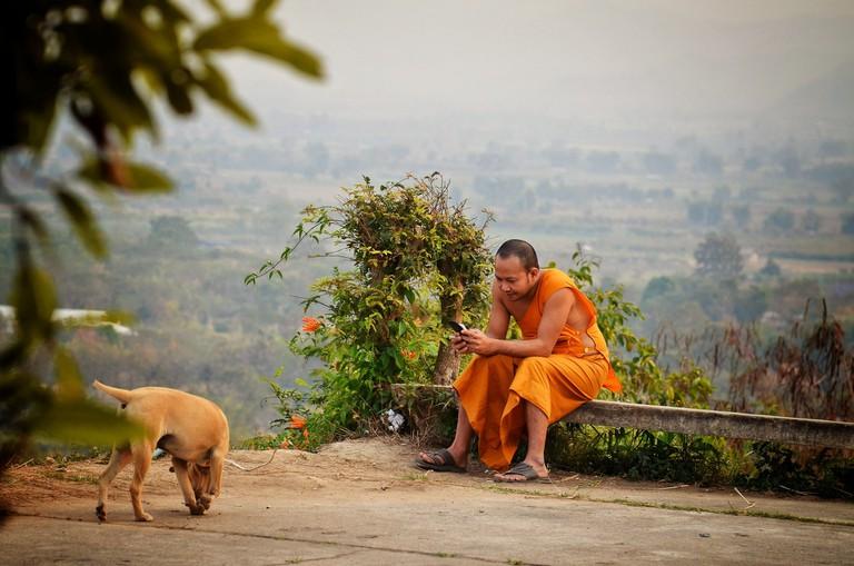Calm monk