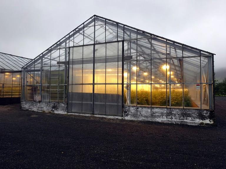 Hveragerdi Greenhouse