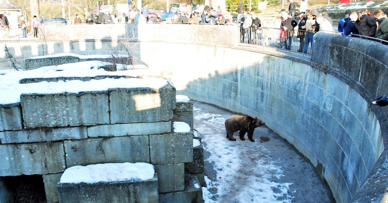 Visitors gather to catch a glimpse of Bern's bears