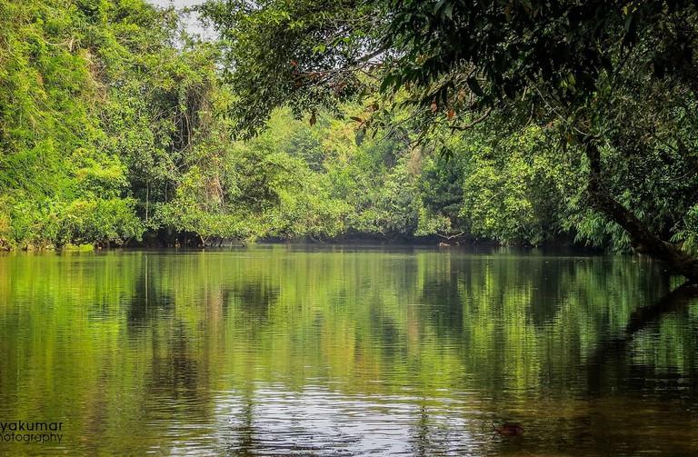 8.adavi_ecotourism_