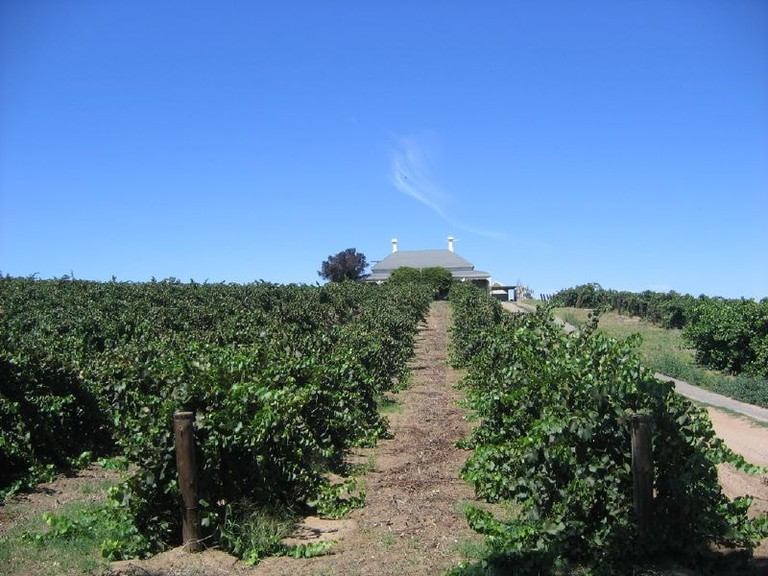 Barossa Valley | © Bram Souffreau:Wikimedia Commons