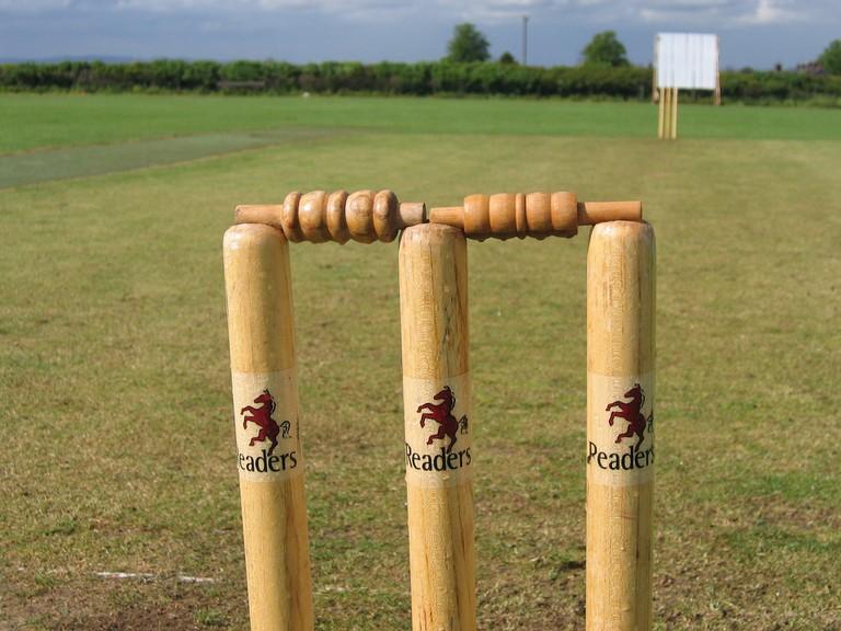 cricket-753940_1920