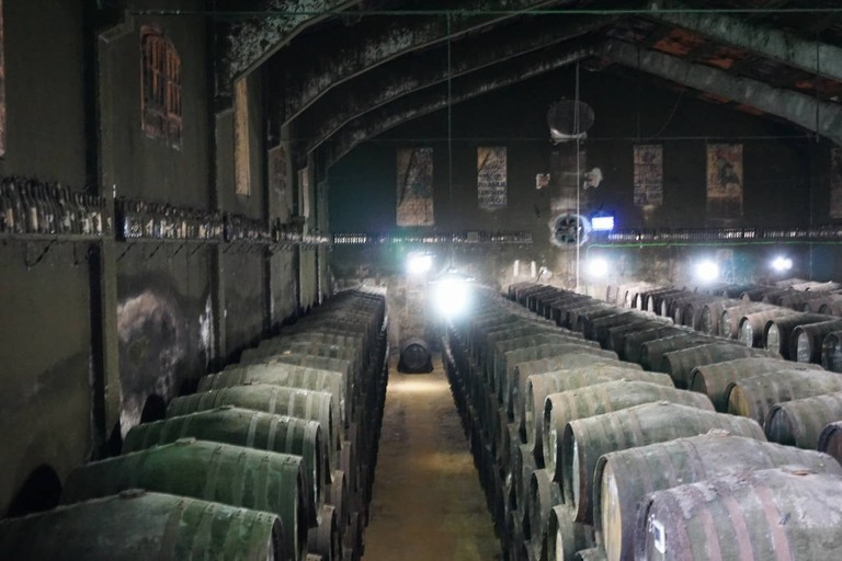 The spectacular, mould-lined cellar at Bodega Toro Albalá