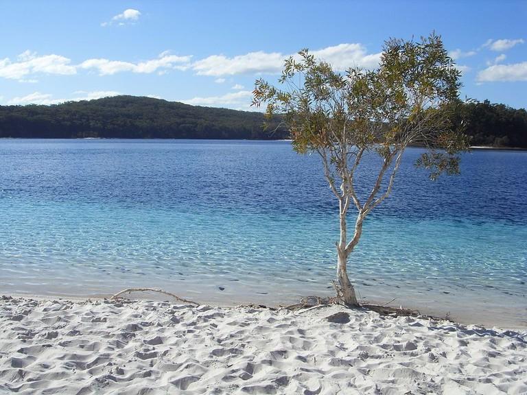 Lake McKenzie | © Korkut Tas:Wikimedia Commons