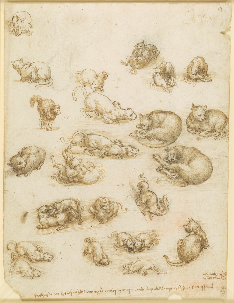 Leonardo-Cats, lions and a dragon, c.1517–18