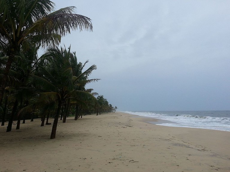 Mararikulam Beach in Kerala is famous for its palm groves that almost touch the sea