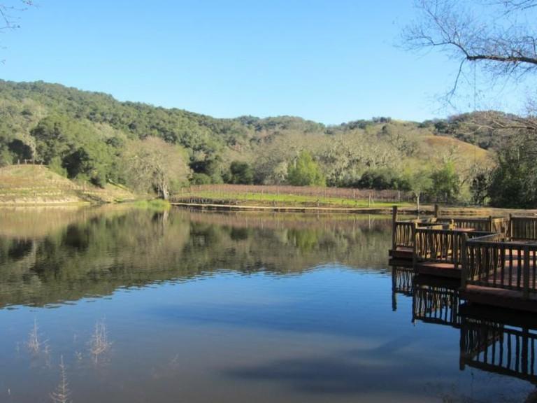 Martin Ranch Winery, Gilroy