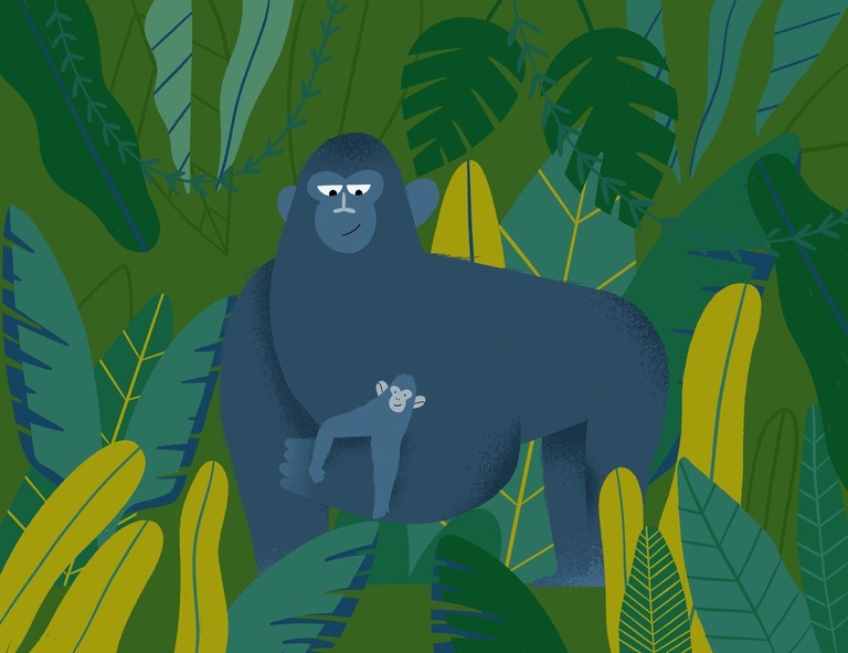 How Gorillas and Rwandan Locals Depend On Each Other'