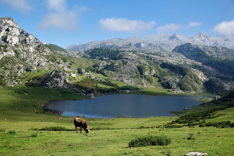 The Pyrenees is ideal for nature lovers