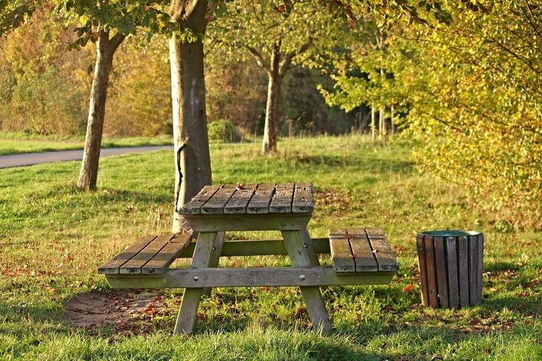 https://pixabay.com/en/bank-resting-place-forest-seat-2878489/