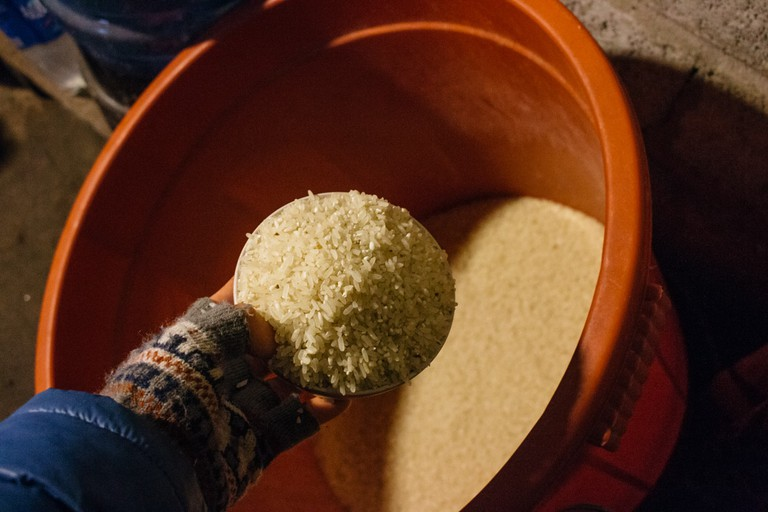 Rice stored in a plastic container for daily meals