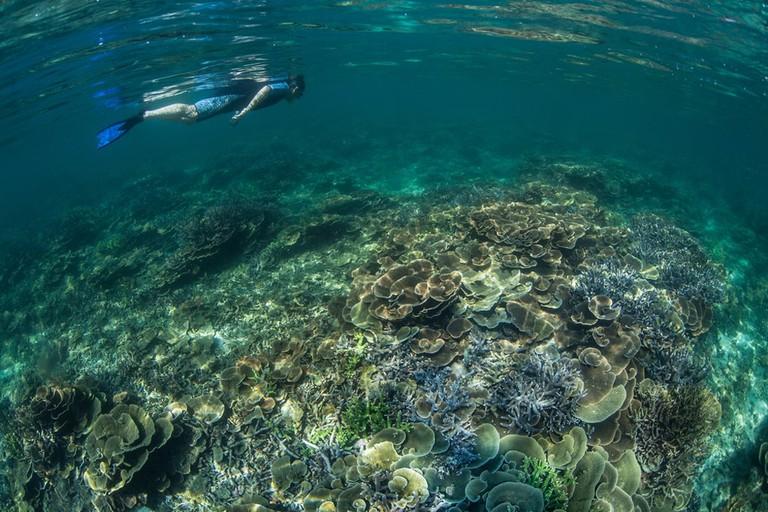 Scuba-Diving-Mergui-Archipelago-Myanmar