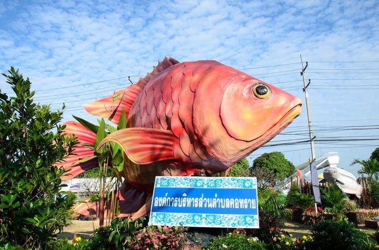 Fish in Singburi, Thailand