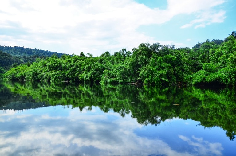 Cardamom Mountains in Koh Kong