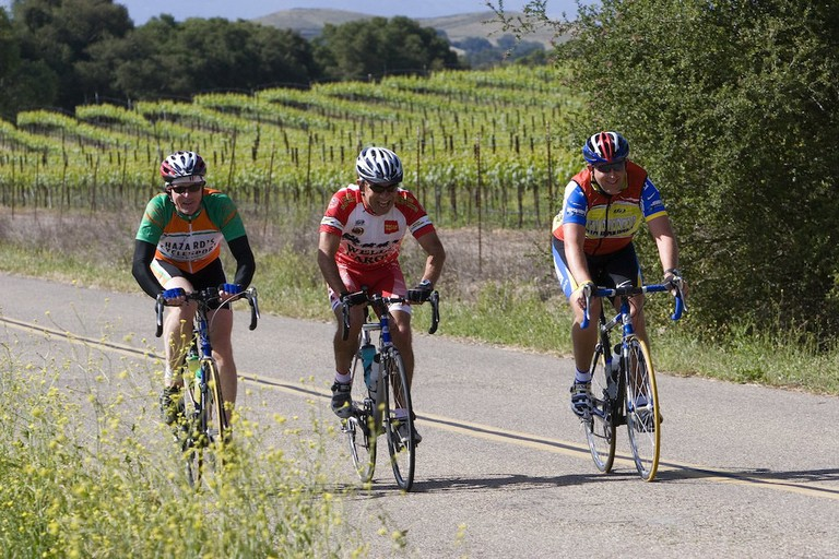 Bikers ride past nearby vineyards | Courtesy of SolvangUSA.com
