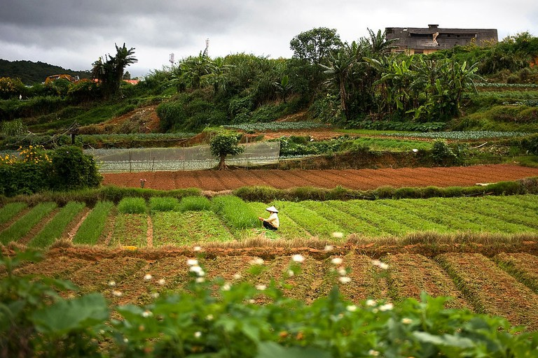 Farmland in Da Lat.
