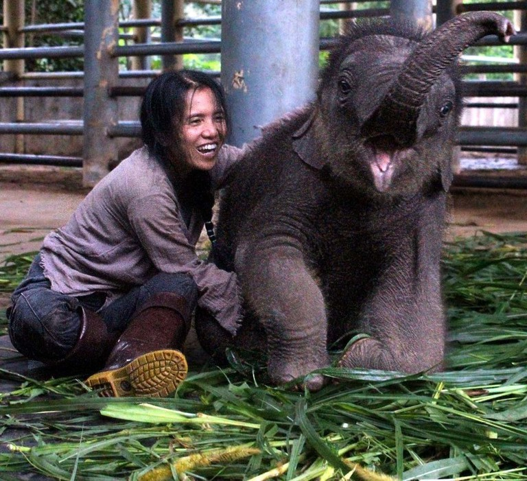 Lek Chailert with one of her baby elephants, Navaan