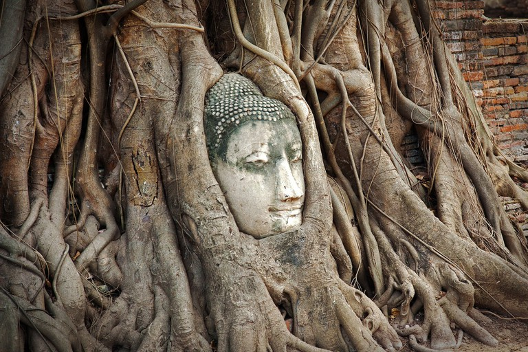 How did it get there?! Buddha head in a tree in Ayutthaya