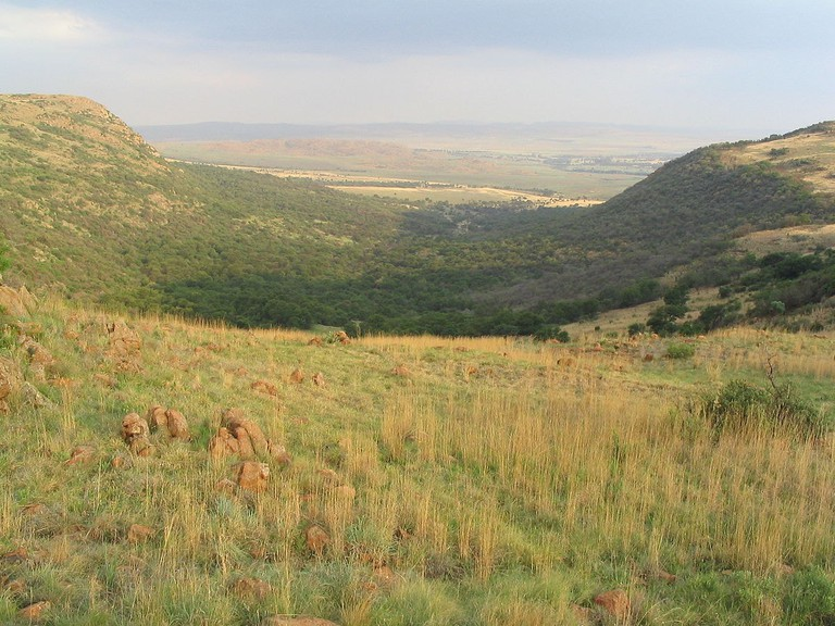 Suikerbosrand hills, where new city remains have been discovered