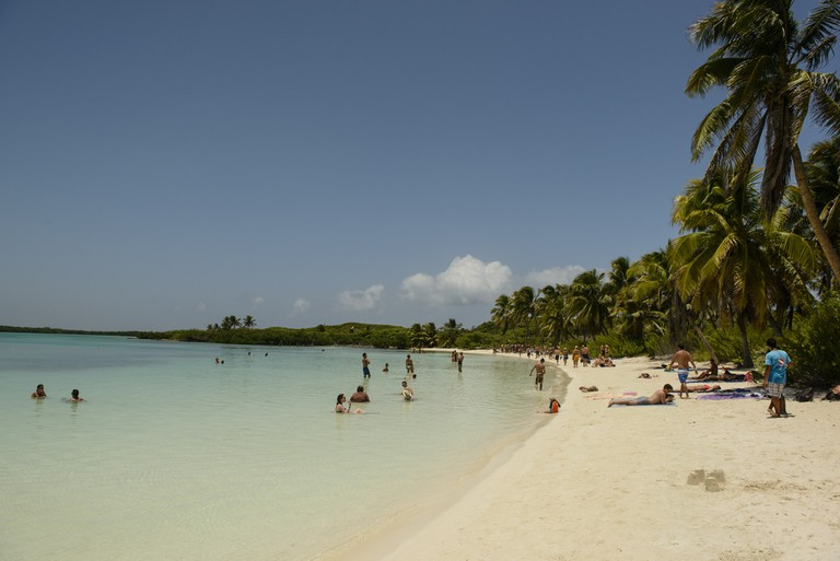 Beach in Isla Contoy