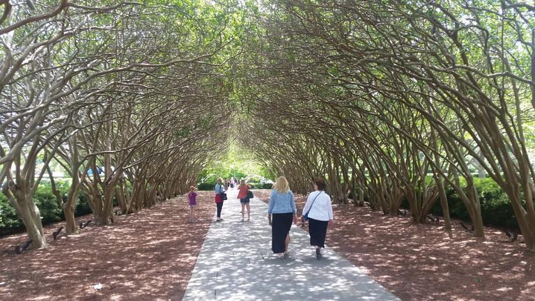 The Dallas Arboretum and Botanical Gardens has plenty of nature wonders