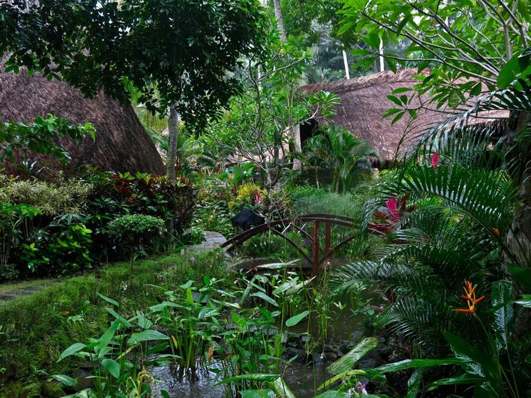The lush garden at Fivelements in Bali