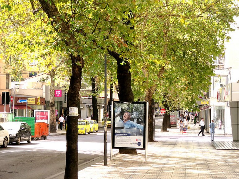 A street in Tirana lined with trees